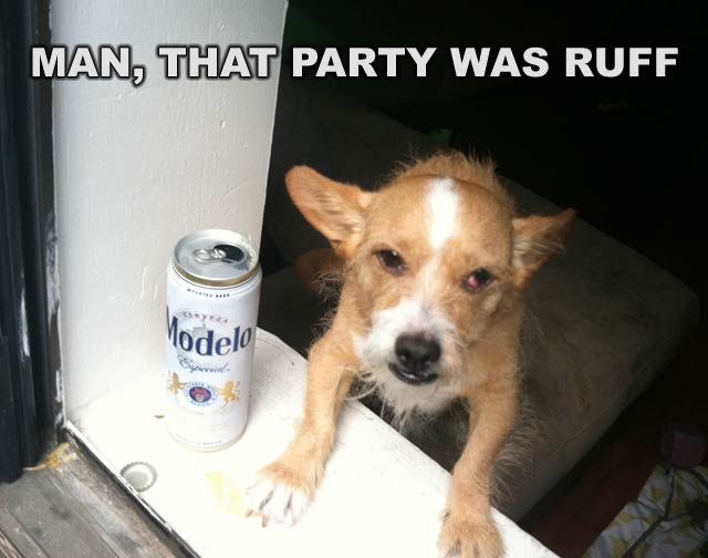 Man, That party was ruff