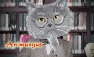 "Animungus – Episode 1 ""Why There Are No Cat Philosophers"" """